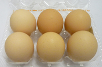 宮川農場の卵6ヶパック