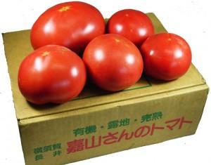嘉山さんのトマト1kg