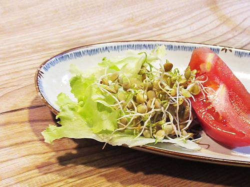 スプラウト栽培専用ジャーと育てる発芽豆のレンズ豆の料理