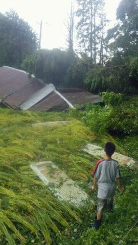 三芳村台風被害状況2
