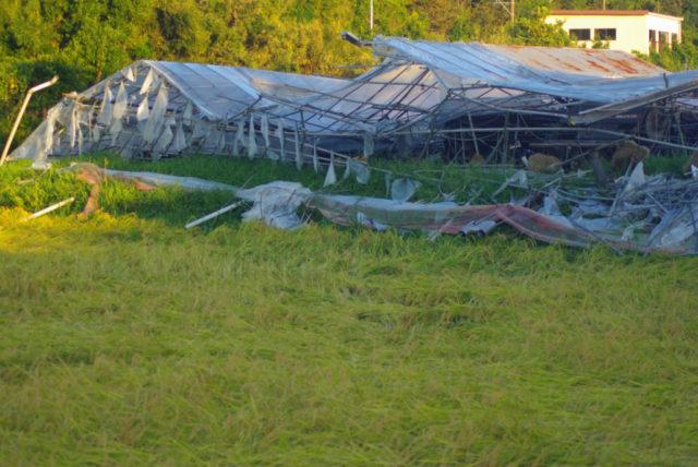三芳村台風被害状況3